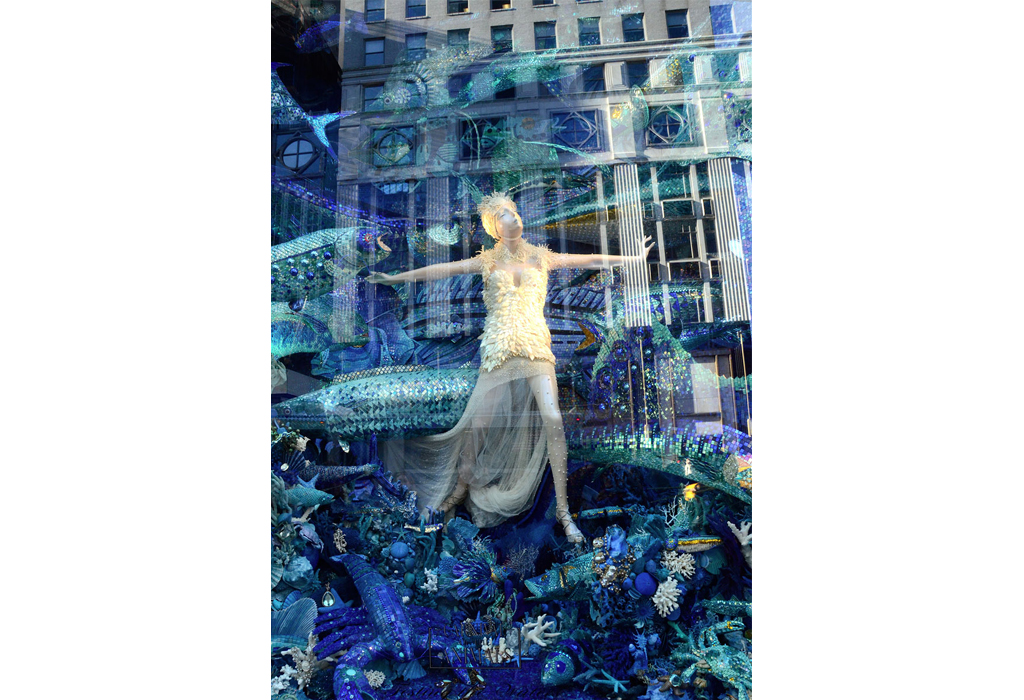 Reflection- Bergdorf Windowvert